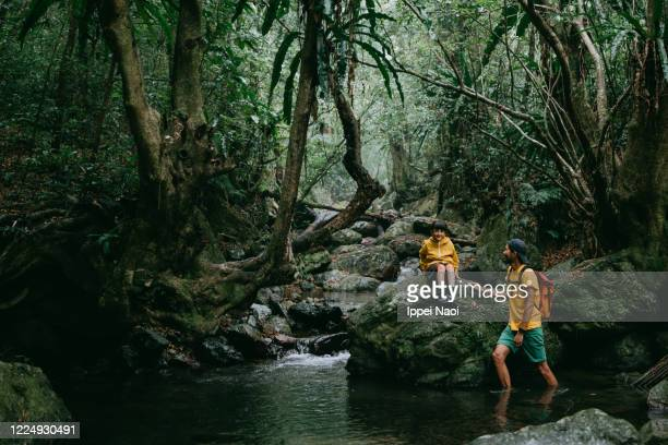 father and child in jungle, amami oshima island, japan - ippei naoi stock pictures, royalty-free photos & images
