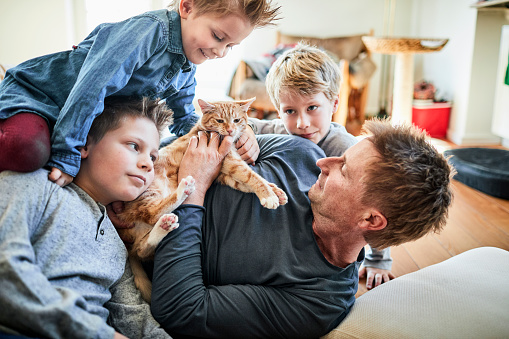 Father and children lying down at home with cat - gettyimageskorea