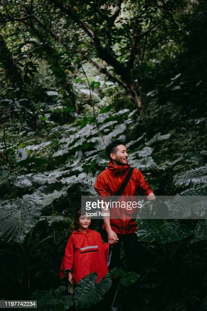 father and cute little girl hiking together in lush green rainforest, taiwan - taiwan stock pictures, royalty-free photos & images