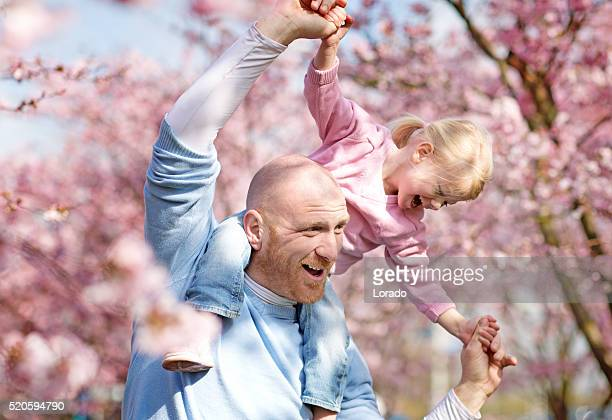 Father and daughter among cherry blossom trees