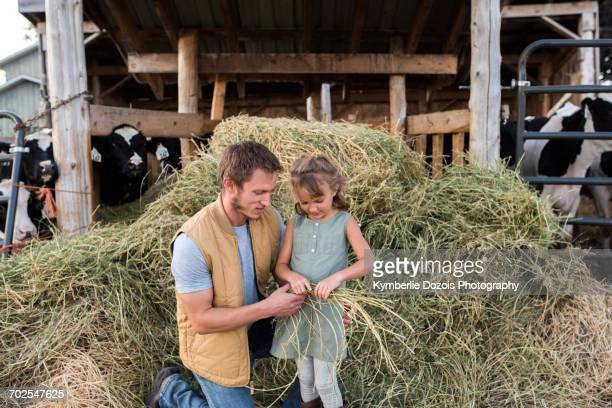 Father and daughter beside cow shed, daughter holding hay