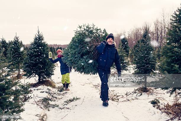 Father and daughter carrying freshly cut Christmas tree outdoors winter.