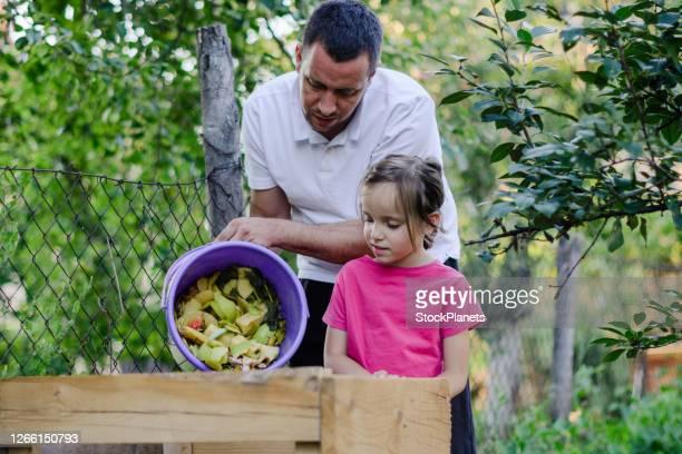 père et fille compostant les déchets de cuisine - humus photos et images de collection