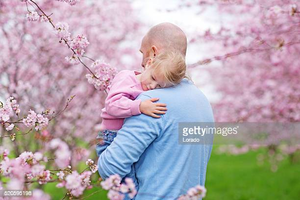 Father and daughter cuddling among cherry blossom trees