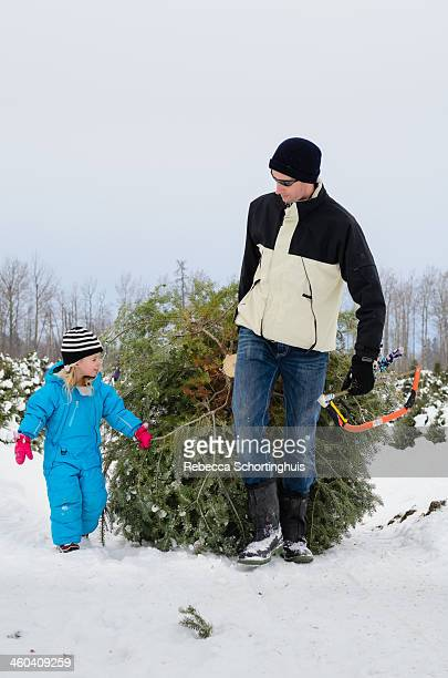 Father and daughter dragging fresh Christmas tree