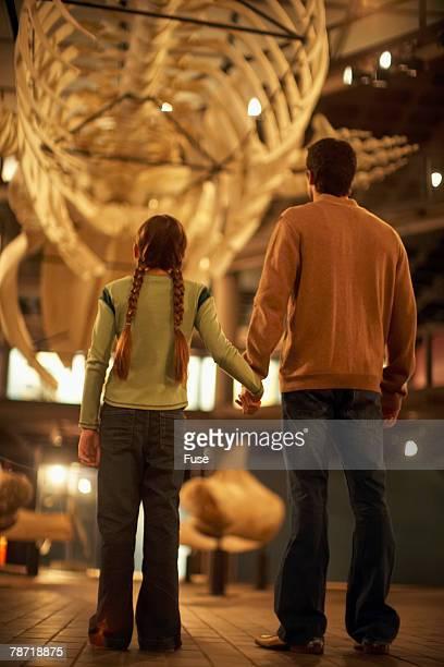 father and daughter enjoying a museum exhibit - museo de historia natural museo fotografías e imágenes de stock