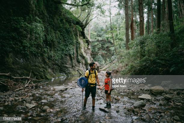 father and daughter hiking in river in forest ravine - ippei naoi stock pictures, royalty-free photos & images