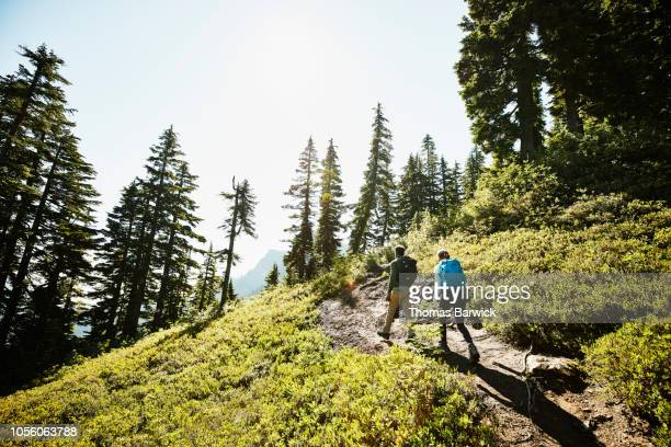 father and daughter hiking on trail through forest - north america stock pictures, royalty-free photos & images