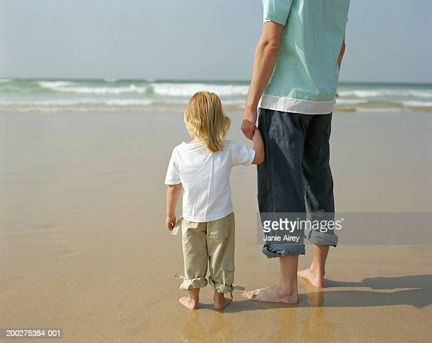 Father and daughter (2-4) holding hands on beach, rear view
