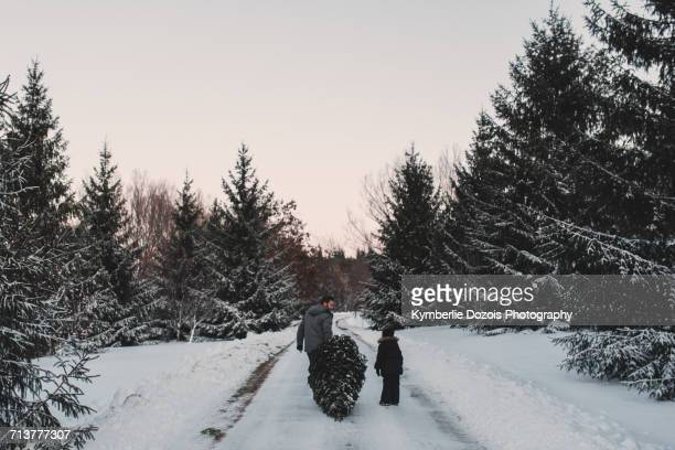 father and daughter out getting their own christmas tree - dragging stock pictures, royalty-free photos & images