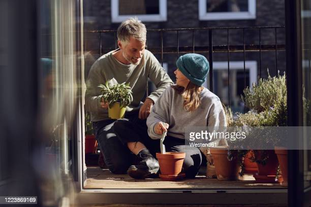 father and daughter planting together on balcony - gärtnern stock-fotos und bilder