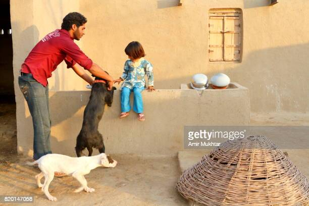 father and daughter playing with dog - amir mukhtar stock photos and pictures