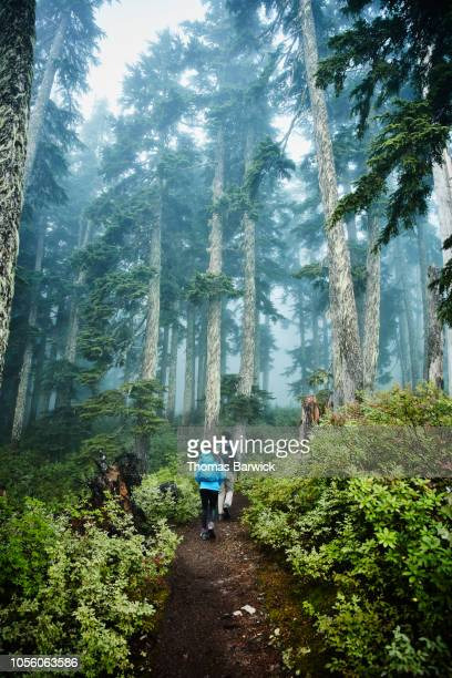 Father and daughter starting early morning hike through foggy forest