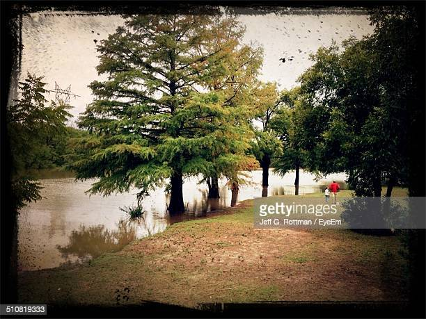 father and daughter walking by lake in park - san angelo texas stock pictures, royalty-free photos & images