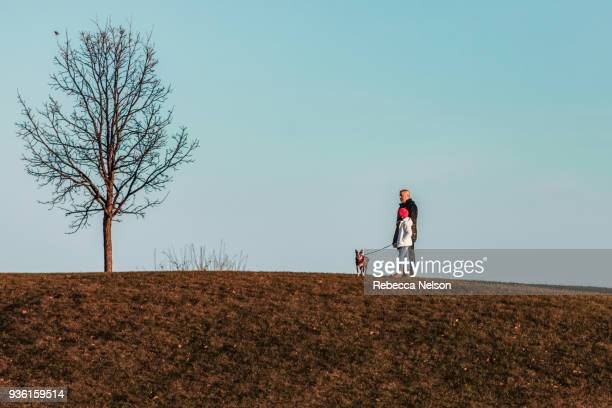 father and daughter walking dog on hillside - boston terrier stock pictures, royalty-free photos & images