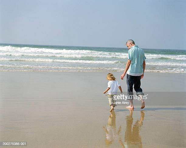 father and daughter (2-4) walking on beach, rear view - rolled up pants stock pictures, royalty-free photos & images