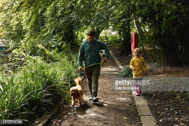 father and daughter walking the dog together - dog walking stock pictures, royalty-free photos & images