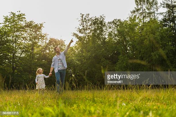Father and daughter walkinh hand in hand on meadow