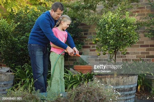father and daughter (10-12) watering garden with hose, side view - fille de 12 ans photos et images de collection