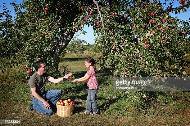 Father and daugther in an orchard
