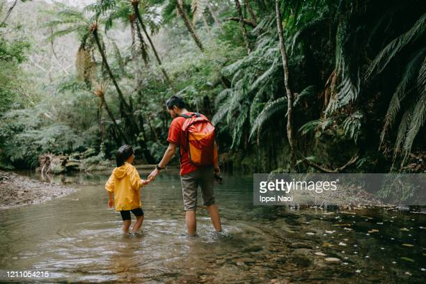 father and little girl hiking in jungle river, okinawa, japan - reality fernsehen stock pictures, royalty-free photos & images