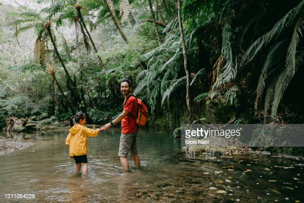 father and little girl hiking through jungle river, okinawa, japan - reality fernsehen stock pictures, royalty-free photos & images