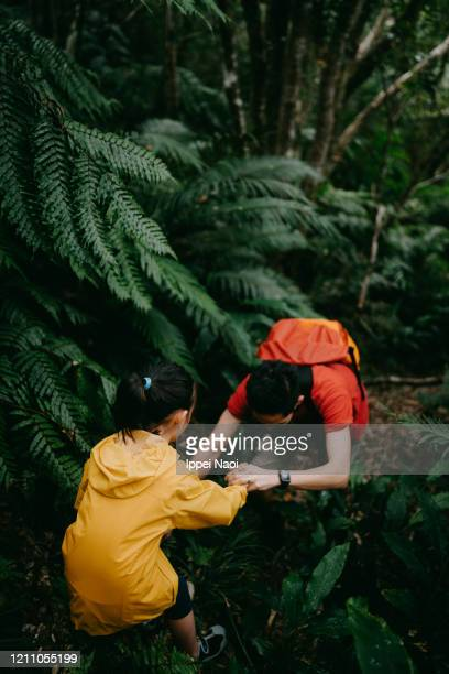 father and little girl hiking together in rainforest, okinawa, japan - reality fernsehen stock pictures, royalty-free photos & images