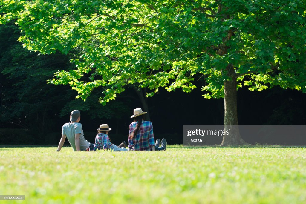 Father and mother and daughter relax on the lawn : Stock Photo
