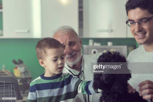 Father and son bring their dog to senior veterinarian at veterinarian's office