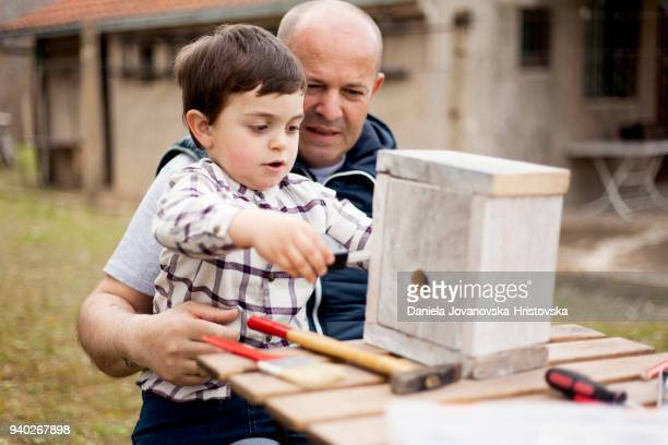 father and son building birdhouse outdoor - birdhouse stock pictures, royalty-free photos & images