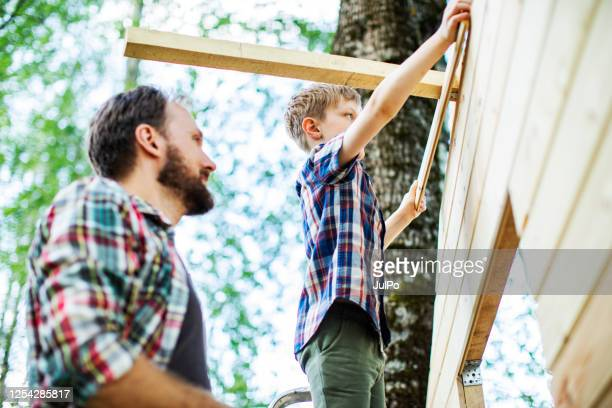 father and son building tree house at backyard - family with one child stock pictures, royalty-free photos & images