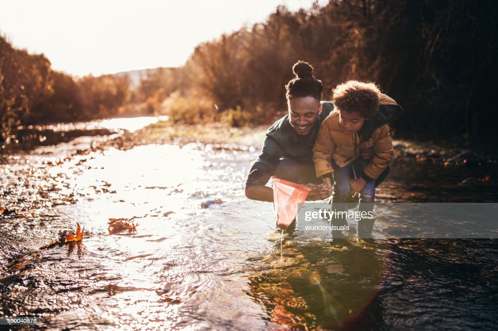 Father and son catching fish with fishing net in river : Stock Photo