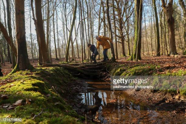 father and son crossing a stream - mansfield england stock pictures, royalty-free photos & images