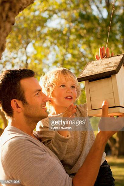 father and son examining birdhouse - birdhouse stock photos and pictures
