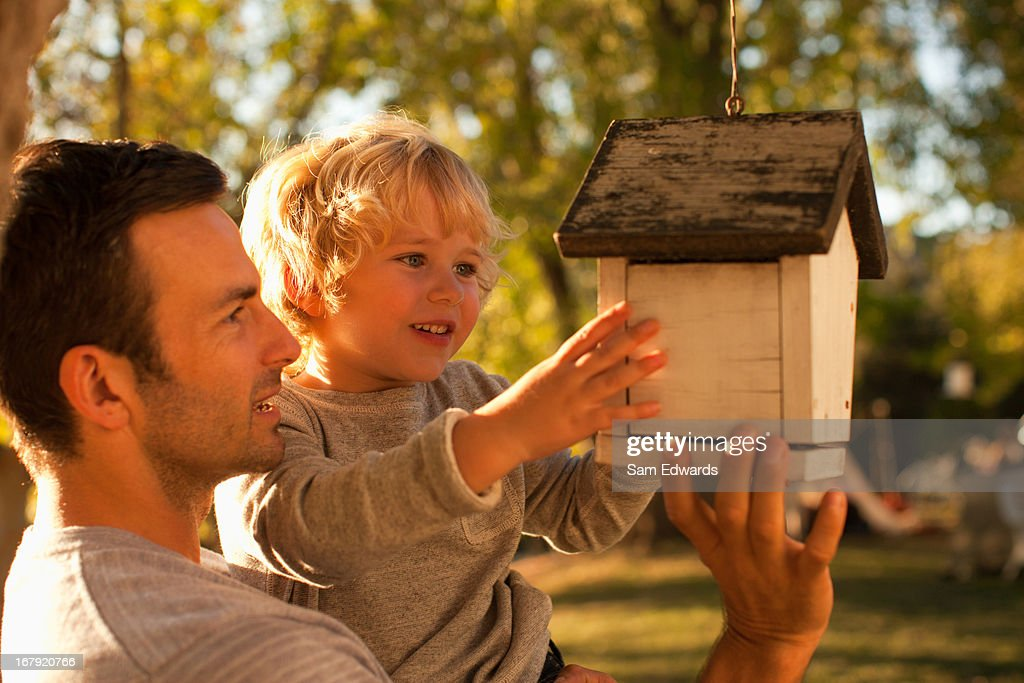 Father and son examining birdhouse : Stock Photo