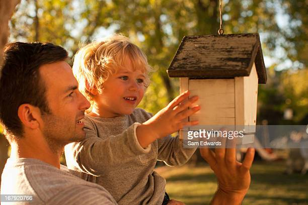 father and son examining birdhouse - birdhouse stock pictures, royalty-free photos & images