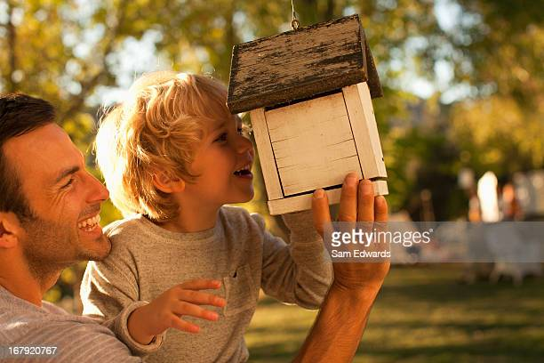 father and son examining birdhouse - bird house stock photos and pictures