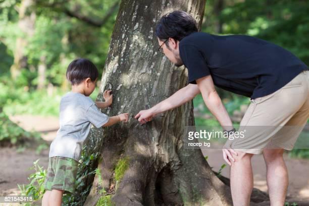 父と息子の探査