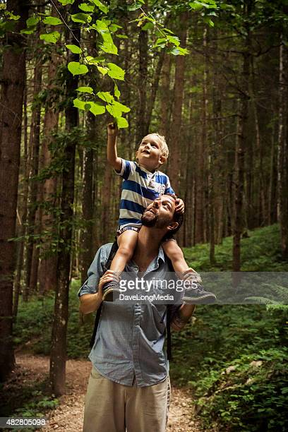 father and son exploring nature - carrying on shoulders stock pictures, royalty-free photos & images