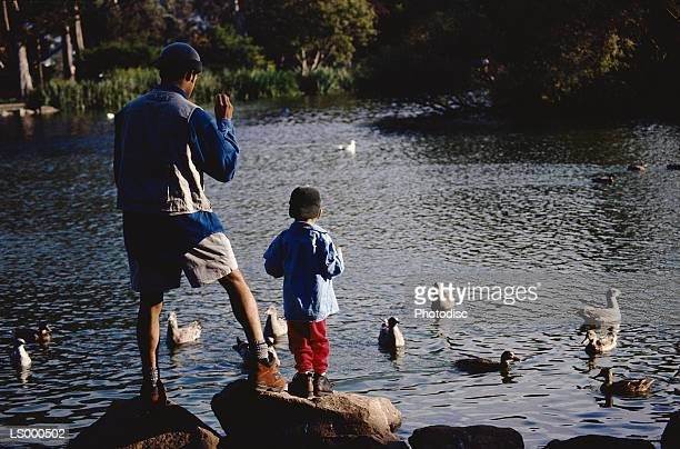 Father and Son Feeding Ducks