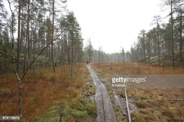 Father and son hiking in Finland