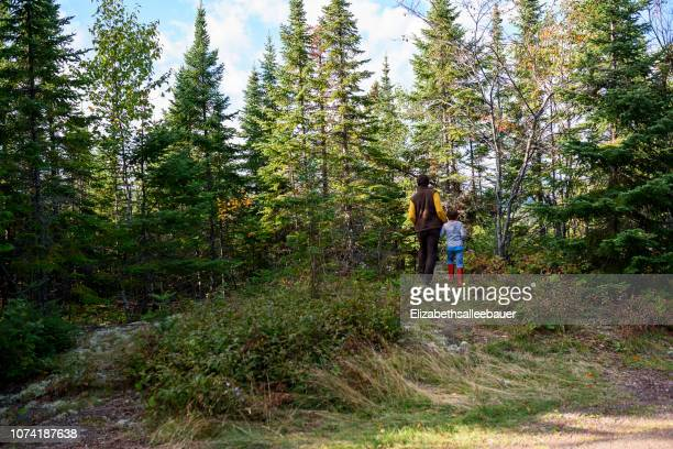 father and son hiking in the woods, lake superior provincial park, united states - lake superior provincial park stock pictures, royalty-free photos & images
