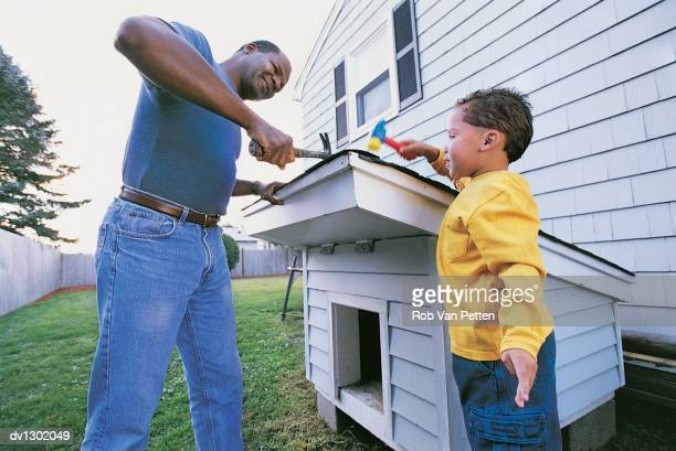 Father and Son in Garden Hammering Kennel Roof Together