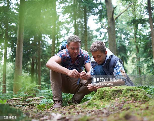 father and son observing nature in forest location - adventure stock pictures, royalty-free photos & images