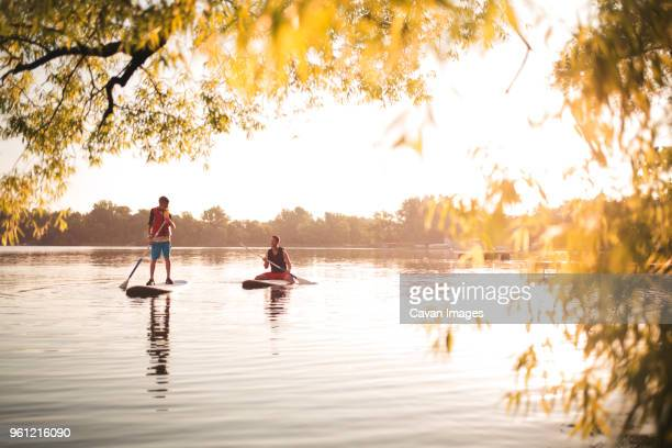 father and son paddleboarding at lake on sunny day - minnesota foto e immagini stock