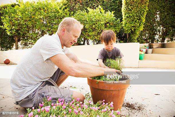 Father and son putting plant in pot