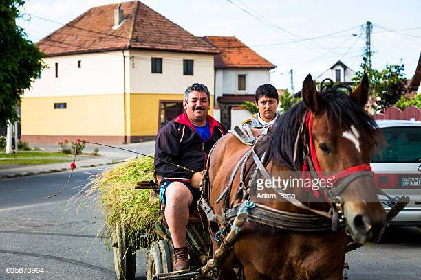 father and son riding horse and cart, rasnov, transylvania, romania - siebenbürgen stock-fotos und bilder