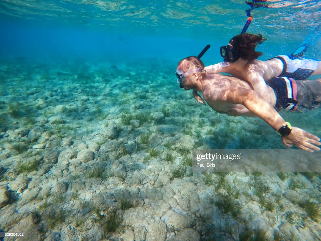 Father and son snorkeling in sea, Zakynthos Island, Greece : Stock Photo