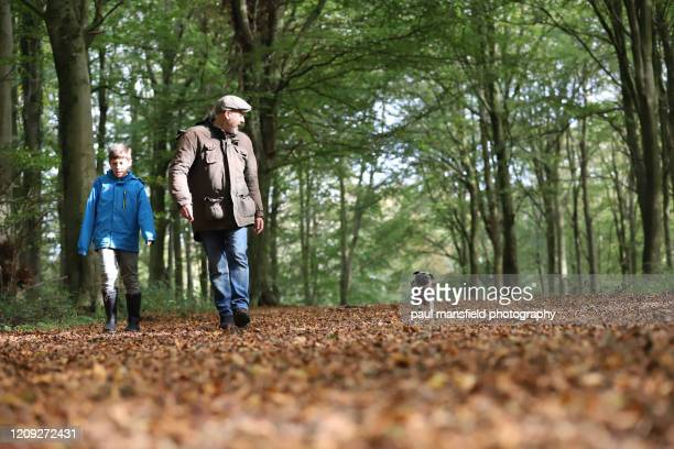 father and son taking dog for a walk - father stock pictures, royalty-free photos & images