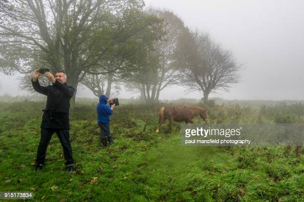 Father and son taking photos of New Forest ponies at Cissbury Ring